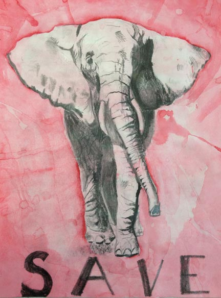 Elephant Pencil And Watercolor By A 13 Year Old Student
