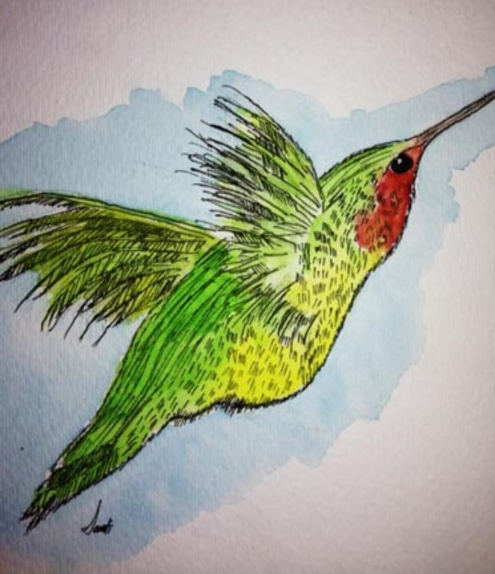 Hummingbird, Watercolor on paper by a 10-year-old student  - Art